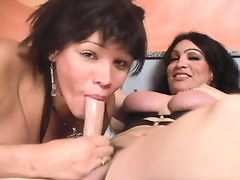 Naughty tgirls Maria & Perla having oral sex