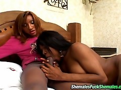Insatiable shemales have got under their silky pantyhose double pleasure