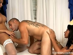 Transsexuals fucking around with a guy